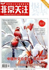 非常关注 月刊 2011年01期(电子杂志)(仅适用PC阅读)
