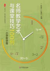 名师教学艺术与课堂技巧100例(大夏书系)