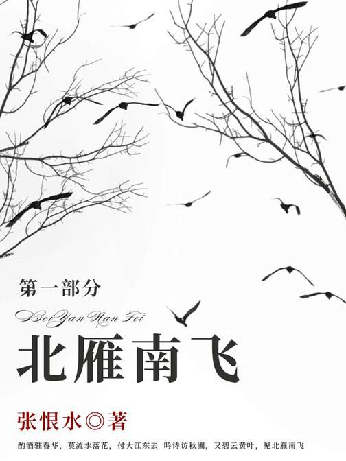 张恨水经典作品:北雁南飞·第一部分