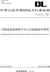 DL/T 717—2013 汽轮发电机组转子中心孔检验技术导则