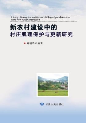 新农村建设中的村庄肌理保护与更新研究