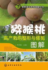 猕猴桃高产栽培整形与修剪图解