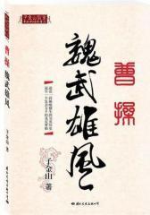 曹操魏武雄风(试读本)