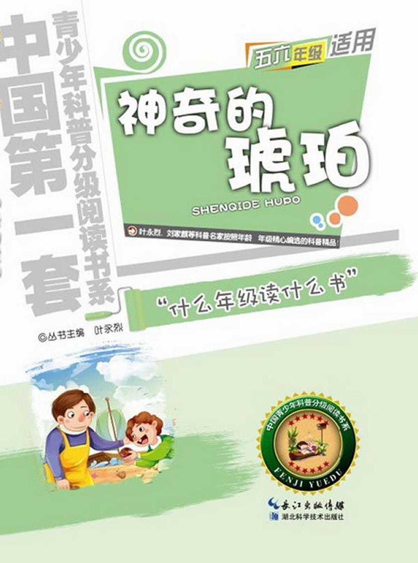 神奇的琥珀:中国青少年科普分级阅读书系
