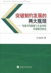 突破制约发展的两大瓶颈:实施节约能源与生态环保发展路径研究