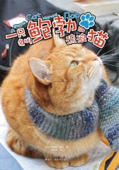 一只名叫鲍勃的流浪猫