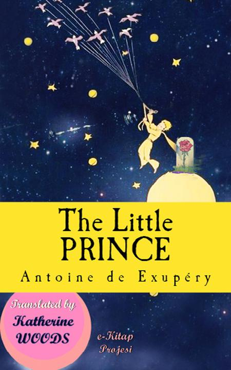 The Little Prince Illustrated Edition