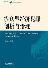 涉众型经济犯罪剖析与治理