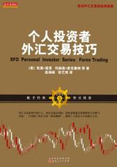 个人投资者外汇交易技巧