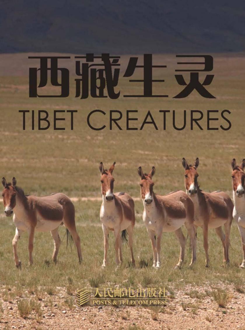 西藏生灵(名信片图集)(仅适用PC阅读)