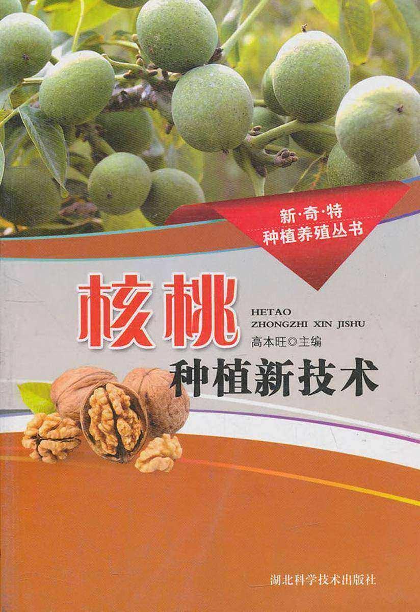 核桃种植新技术(新·奇·特种植养殖丛书)