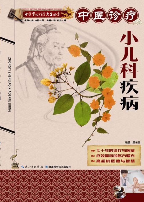 中医诊疗小儿科疾病(中医实用诊疗大全丛书)