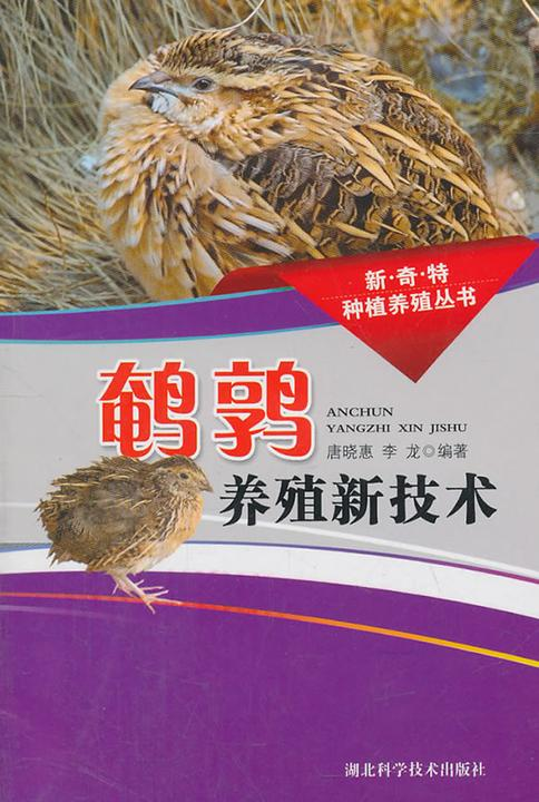 鹌鹑养殖新技术(新奇特种植养殖丛书)
