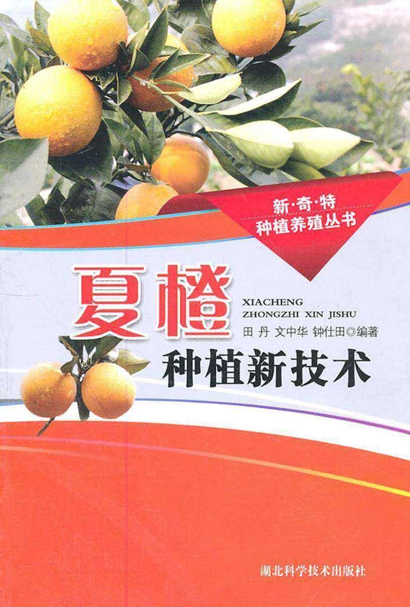 夏橙种植新技术(新·奇·特种植养殖丛书)