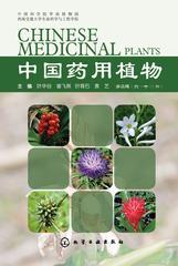 中国药用植物(六)