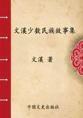 文溪少数民族故事集