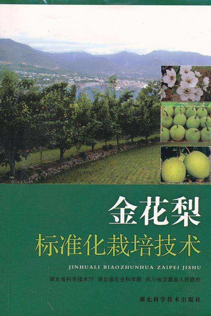金花梨标准化栽培技术