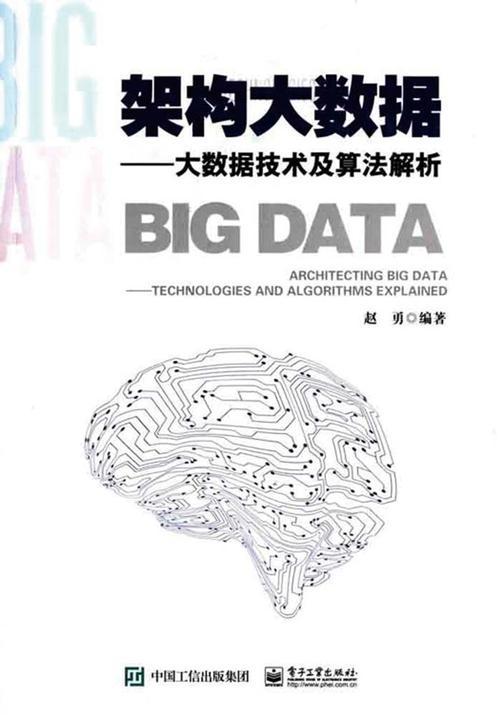 架构大数据:大数据技术及算法解析