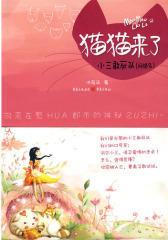 猫猫来了:小三敢死队(网络名)(试读本)