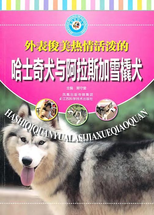 哈士奇犬与阿拉斯加雪橇犬