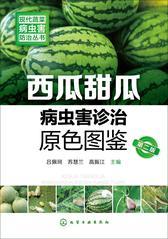西瓜甜瓜病虫害诊治原色图鉴(第二版)