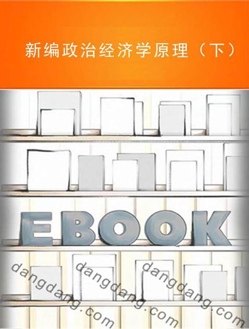 新编政治经济学原理(下)