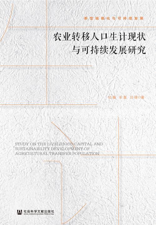 农业转移人口生计现状与可持续发展研究(新型城镇化与可持续发展)