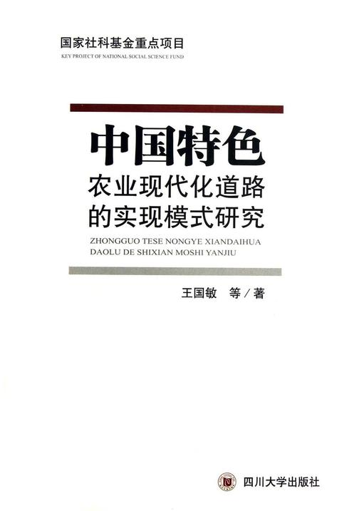 中国特色农业现代化道路的实现模式研究
