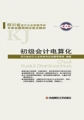 四川会计从业资格考试专家命题预测试卷及解析:初级会计电算化