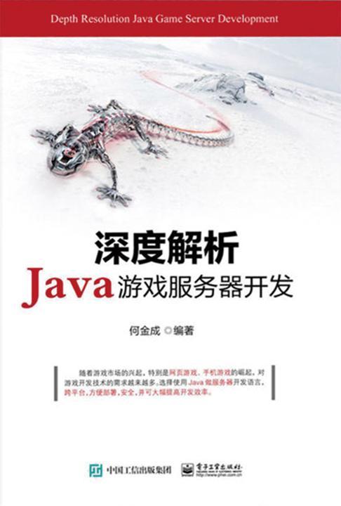 深度解析Java游戏服务器开发