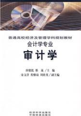 审计学(唐毅泓,邢晟)
