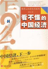 看不懂的中国经济(试读本)