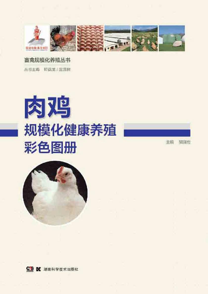 畜禽规模化养殖丛书——肉鸡规模化健康养殖彩色图册