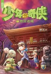 《少年奇侠1之地宫迷城》(试读本)
