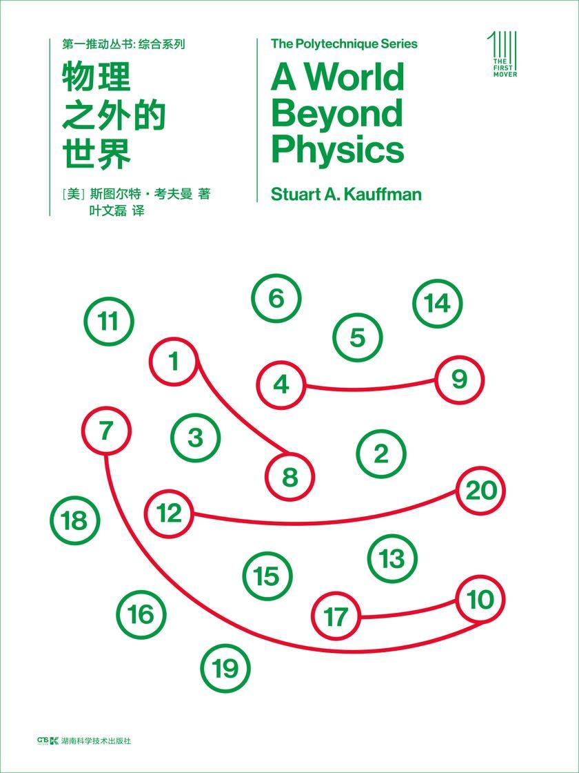第一推动丛书·综合系列:物理之外的世界