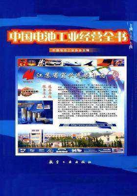 中国电池工业经营全书