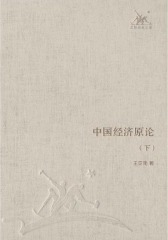 中国经济原论(下册)