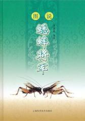 图说蟋蟀将军(仅适用PC阅读)