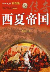 西夏帝国传奇