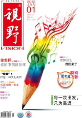 视野 月刊 2012年01期(仅适用PC阅读)