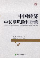 中国经济中长期风险和对策
