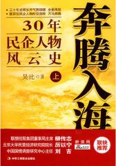 奔腾入海(30年民企人物风云史)上(1-1)(试读本)