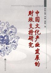 中国文化产业发展的财政支持研究