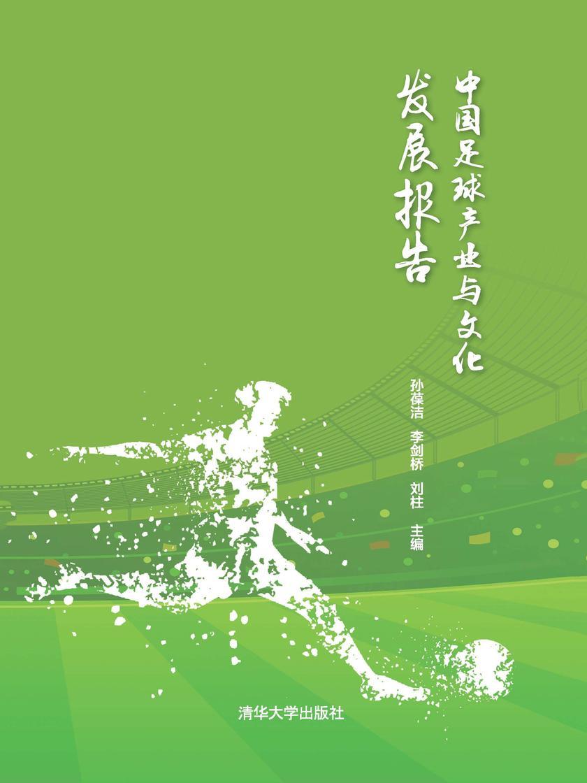 中国足球产业与文化发展报告