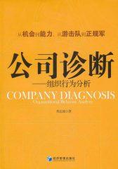 公司诊断——组织行为分析