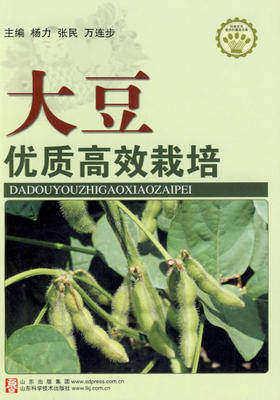 大豆优质高效栽培