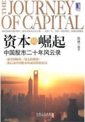 资本的崛起:中国股市二十年风云录(试读本)