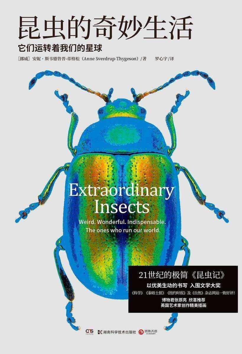 昆虫的奇妙生活