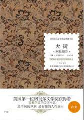 诺贝尔文学奖作品典藏书系:大街(全2册)