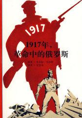 1917年,革命中的俄罗斯(发现之旅 92)(试读本)